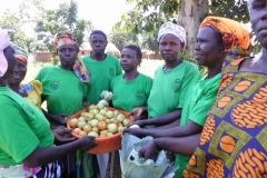 Widows pose after harvesting tomatoes for sale to raise school fees